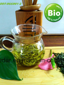 Health Organic Green Tea pictures & photos
