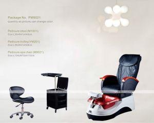 Pedicure Foot SPA Chair (M9021)