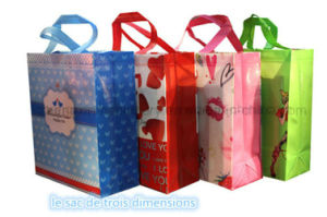Non Woven Laminated Gift Bag Making Machine (Zx-Lt500) pictures & photos