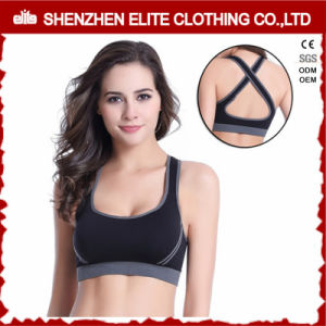 Plus Size Padded Sports Bra with Zipper Elastic Band pictures & photos