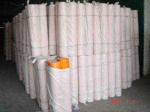 C-Glass of Fibreglass Mesh 125g From China pictures & photos