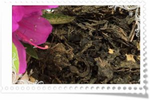Weight Lose Dark Tea with Lotus Leaves and Other Health Chinese Herbs pictures & photos