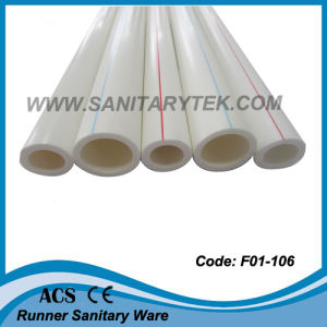 PP-R Pipe for Cold / Hot Water (F01-106) pictures & photos