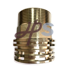 Brass PPR/CPVC Inserts Fittings Offered in China pictures & photos
