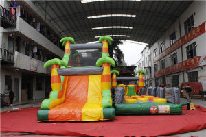 Adult Jungle Inflatable Obstacle Course for Sale Chob1200 pictures & photos