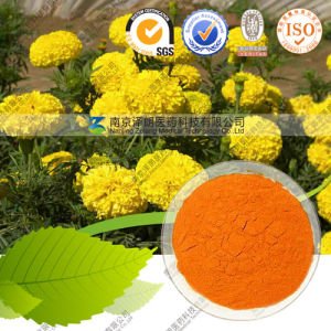 11 Years Factory Supply Food Pigment Marigold Extract Lutein pictures & photos