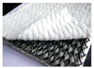 Composition of Geotextile and Geonet pictures & photos