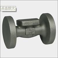 Forged Steel Valve Body (DTV-P019)