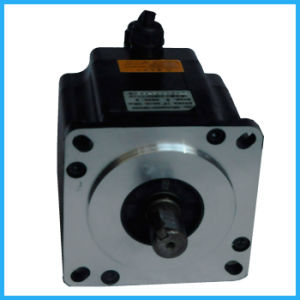110j18190ec-1000 20n. M Factory Price Sales Smooth&Accurate High Efficiency Fast Response Stepper Servo Motor pictures & photos