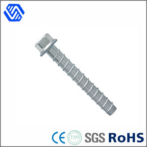 Carbon Steel Hot DIP Galvanised Self Screw Hex Flange Head Concrete Nails Screw pictures & photos