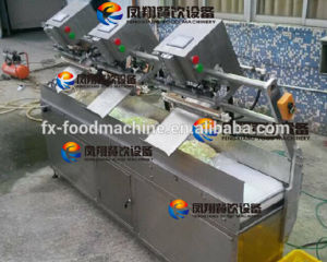 Fsdz-3 Streamlined Vacunnm (Gas Flushing) Packing Machine, Vacuum Packaging Machine for Vegetable Meat Fish Garlic Onon Potato Carrot Nuts Beans Rice Tea etc pictures & photos