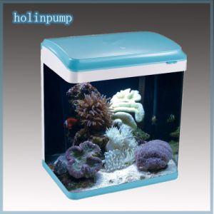 Arc Aquarium Fish Tanks with Blue Pink Black (HL-ATD100) pictures & photos
