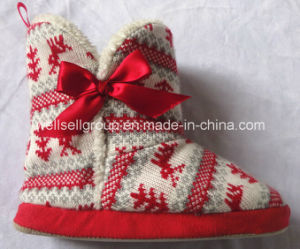 Indoor Slipper/Warm Winter Slipper for Chritmas pictures & photos