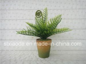 Plastic Bonsai (XD14-101B)
