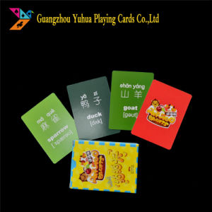 Custom English Flash Cards Manufacturer Yh48 pictures & photos