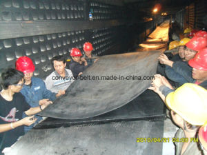 Oil /Cold /Flame/ Fire/ Resistant Rubber Conveyor Belt