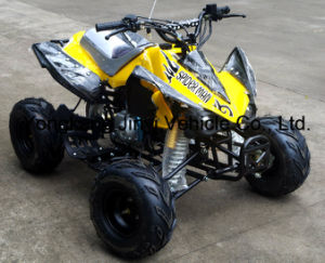 China Factory New 110cc ATV (JY-100-1A) pictures & photos