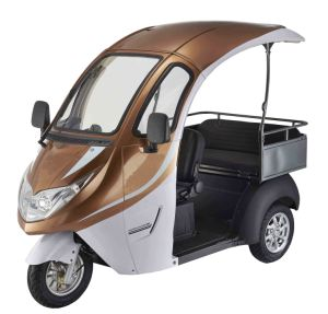 2016 The New Electric Scooter for Passenger and Freight pictures & photos