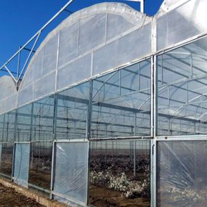 Low Cost Commercial Plastic Film Greenhouse for Sale pictures & photos