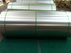 Iris Standard 6061 Aluminum Sheet for Railway pictures & photos