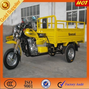 Cargo Tricycle pictures & photos