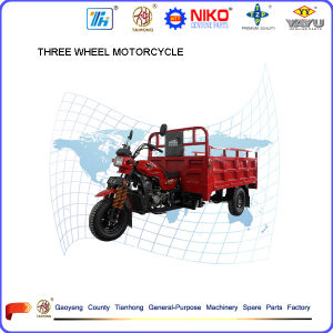 Hot Sale Brand Tianhong 150cc/175cc/200cc/250cc/300cc Three Wheel Cargo Motorcycles pictures & photos