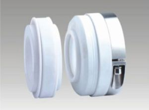 Corrosion Resistant Elastomer Bellow Mechanical Seals (WB2) pictures & photos