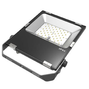 High CRI 5 Years Warranty 50W SMD LED Flood Lamp pictures & photos