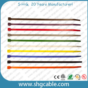 Self Locking Nylon Cable Ties pictures & photos