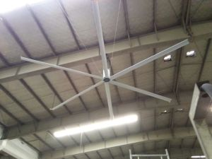 Siemens, Omron Transducer Control Gymnasium Use 5.5m (18FT) DC Industrial Ceiling Fan