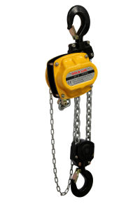 Hoisting Machinery Chain Hoist with G80 Chain pictures & photos