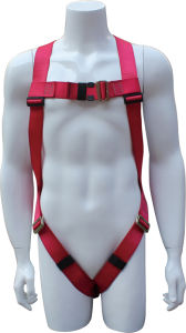 Full Body Harness, Safety Harness, Seat Belt, Safety Belt, Webbing with One-Point Fixed Mode and Three Adjustment Points (EW0110H) pictures & photos