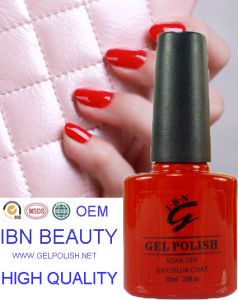 Gel Polish Ibn Gel Nail Polish OEM Gel Nail Polish with 10ml Nail Polish pictures & photos