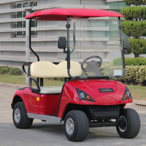CE Approved Lead Battery Powered 2 Seater Electric Golf Cart (DG-C2) pictures & photos