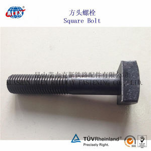 Square Head Bolts with Nut and Washer for Rail Fastening System pictures & photos
