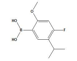 (4-Fluoro-5-isopropyl-2-methoxyphenyl) Boronic Acid cas No. 875446-29-0 pictures & photos