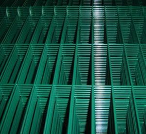PVC Coated Welded Mesh Panel pictures & photos