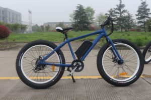 27.5′′ Chinese Electric Mountain Bike with Smart LCD Meter pictures & photos