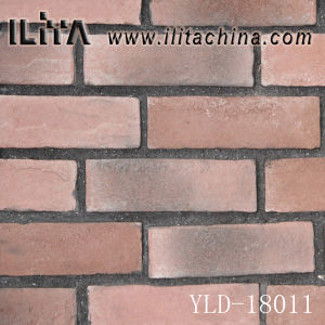Decorative Stone, Building Wall Material, Cultural Stone Tile (18011)