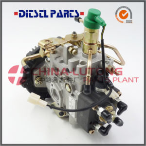 Fuel Injection Pump for Engine Jmc Jx493q1/Pd2009 pictures & photos