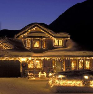 LED Net Lights Christmas Lights Holiday Festival Decoration pictures & photos