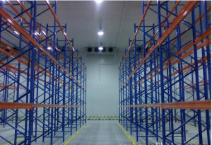 Commercial/Industrial Cold Room/Blast Freezer for Sale pictures & photos