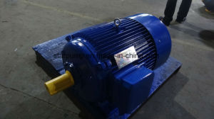 Y Series Iron Casting Three Phase Electric Motor IEC Standard pictures & photos