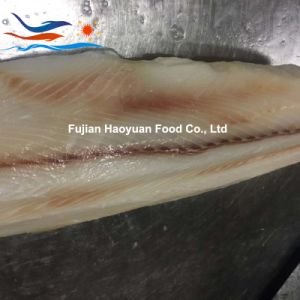 Supplying Sea Frozen Blue Shark Fillet pictures & photos