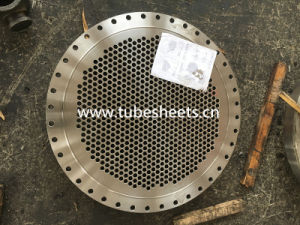 Hot Forged Stainless Steel Tube Sheet