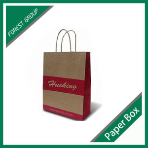 Custom Logo Printed Paper Bag with Handle (FP8039200) pictures & photos