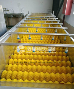 HP-360 High Capacity Spray Fruit and Vegetable Washing Machine, Melon Cleaning Machine pictures & photos
