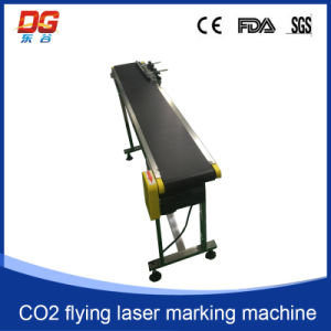 CO2 Flying Laser Marking Machine CNC Engraving pictures & photos