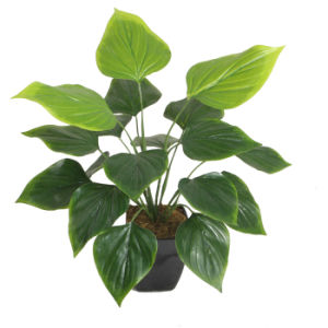 "Artificial Green Plants 50cm Philodendron with 4.5""Plastic Pot, 18 Lvs pictures & photos"