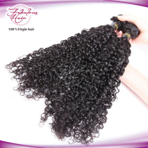 8A Grade Mongolian Curly Virgin Hair 100% Human Hair pictures & photos